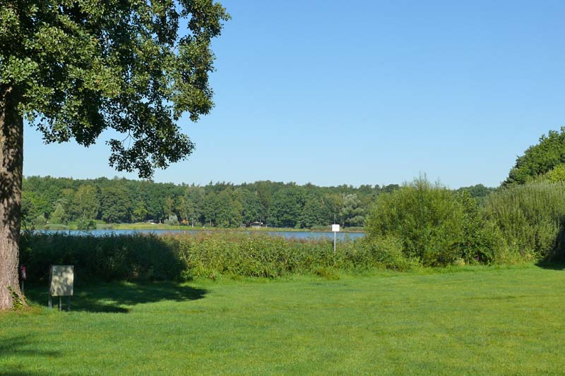 Campingwiese im Sommer - Dresden-Nord